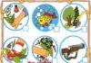 экологические знаки для дошкольников