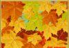 осень-проказница-картинка