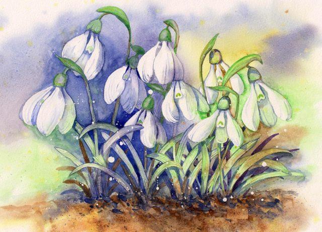 Картинки с смайлами или рисунками настроены почиститься